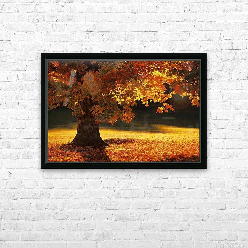landscape_2_0386 HD Sublimation Metal print with Decorating Float Frame (BOX)