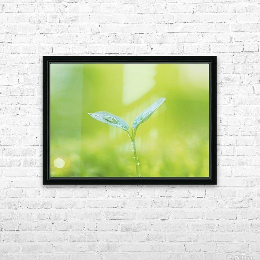 landscape_2_0846 HD Sublimation Metal print with Decorating Float Frame (BOX)