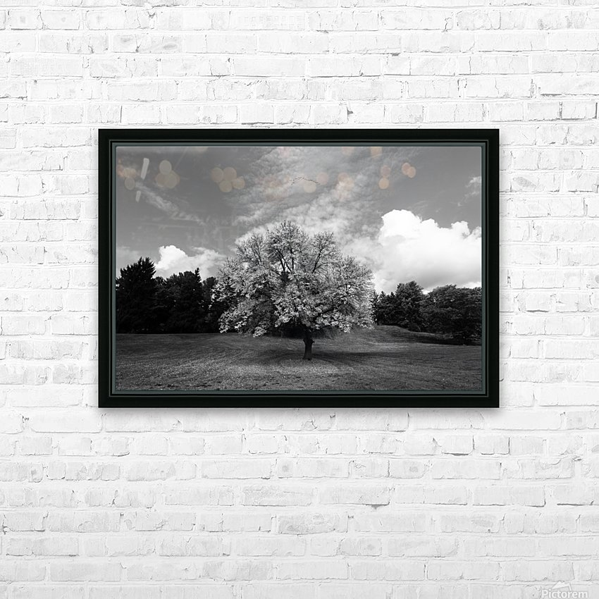 Autumn Glow HD Sublimation Metal print with Decorating Float Frame (BOX)