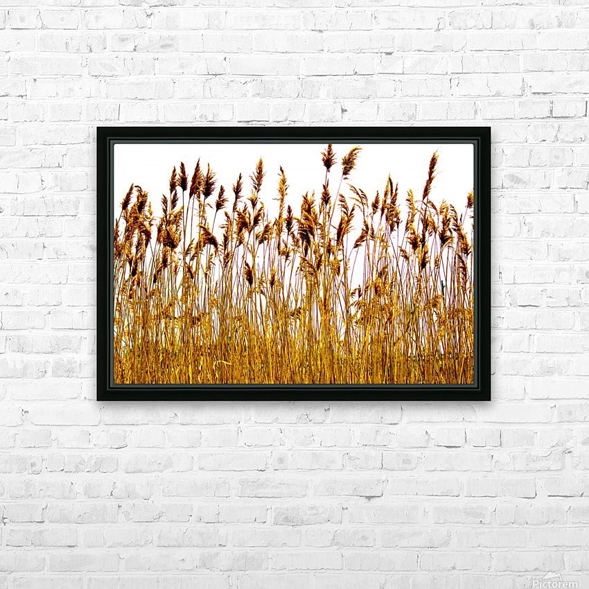 IMG_2852 2 HD Sublimation Metal print with Decorating Float Frame (BOX)