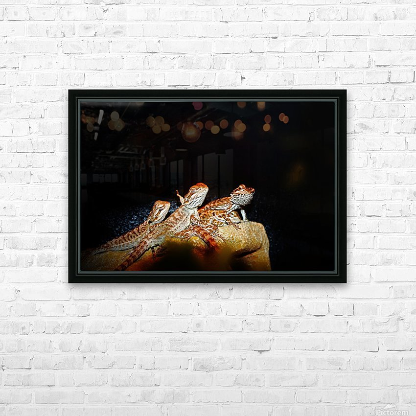 Reptile movie Stars HD Sublimation Metal print with Decorating Float Frame (BOX)