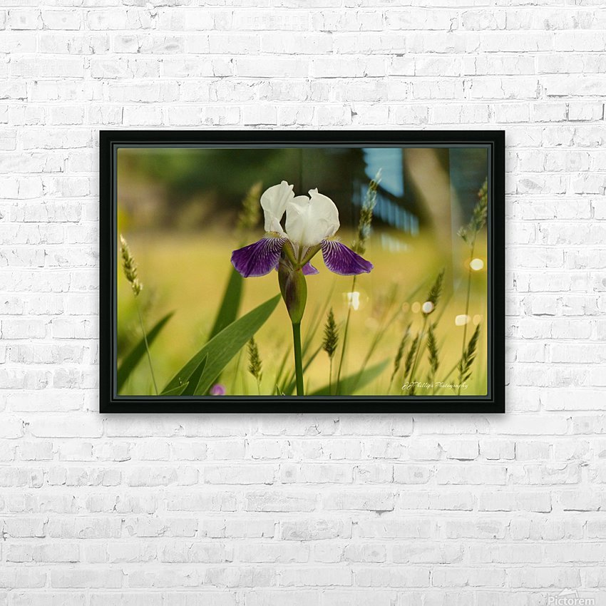 Iris Doll HD Sublimation Metal print with Decorating Float Frame (BOX)