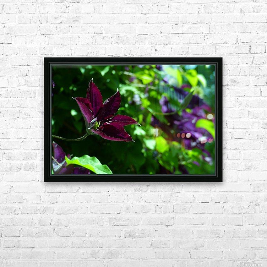 Divine Vine HD Sublimation Metal print with Decorating Float Frame (BOX)