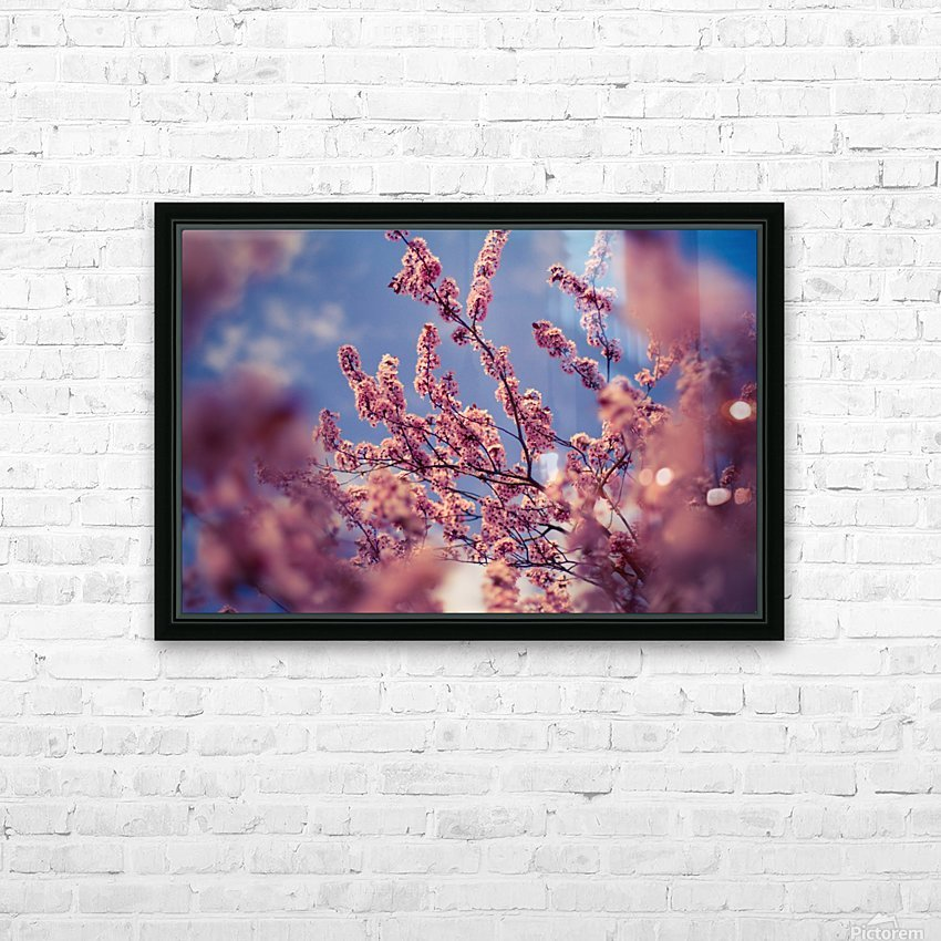 Spring cherry flowers HD Sublimation Metal print with Decorating Float Frame (BOX)