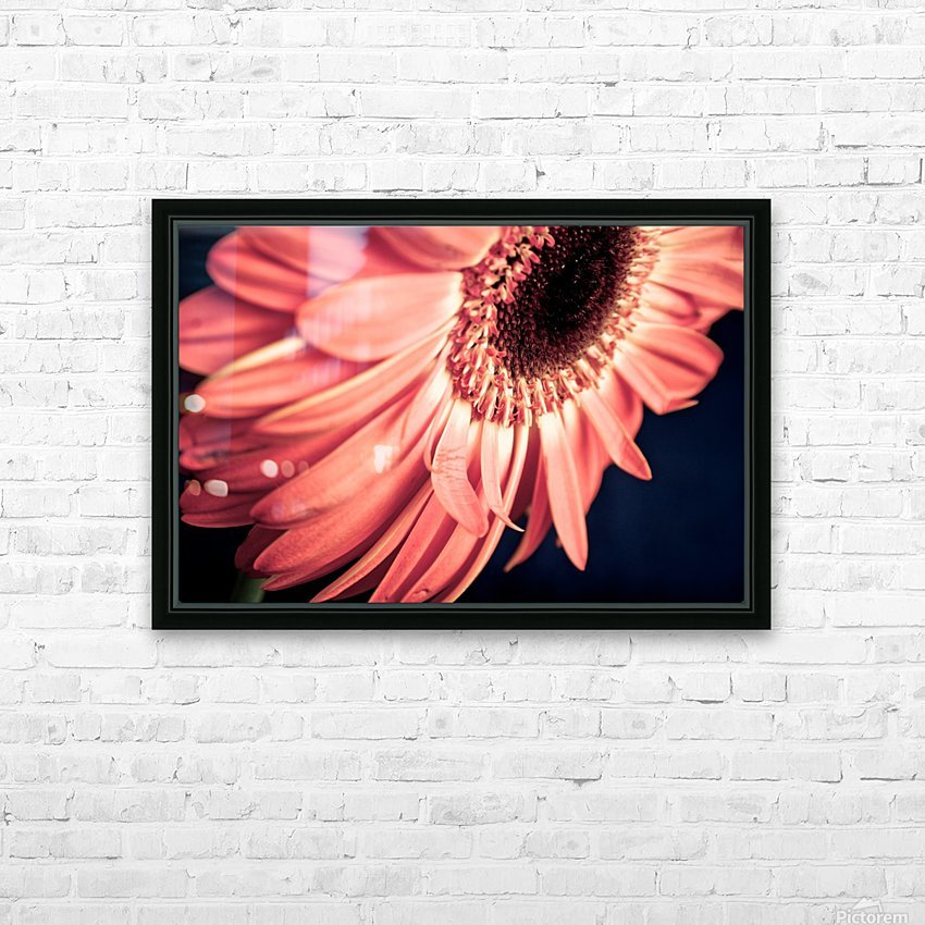 Gerbera flower background HD Sublimation Metal print with Decorating Float Frame (BOX)