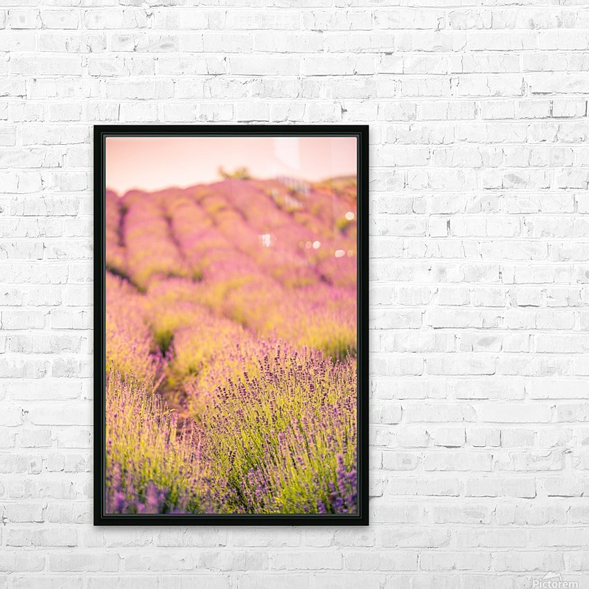 Beautiful Sunset lavender flowers on a field HD Sublimation Metal print with Decorating Float Frame (BOX)