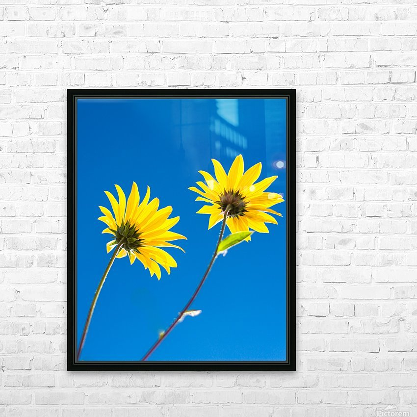 Yellow flowers and blue sky HD Sublimation Metal print with Decorating Float Frame (BOX)