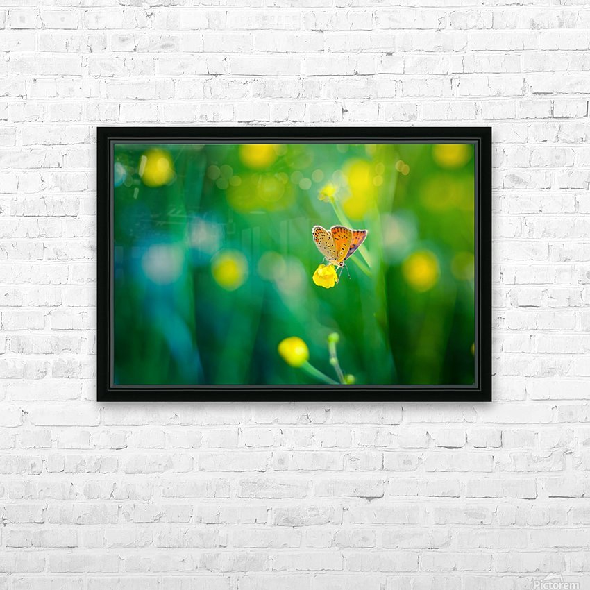 Butterfly summer background HD Sublimation Metal print with Decorating Float Frame (BOX)