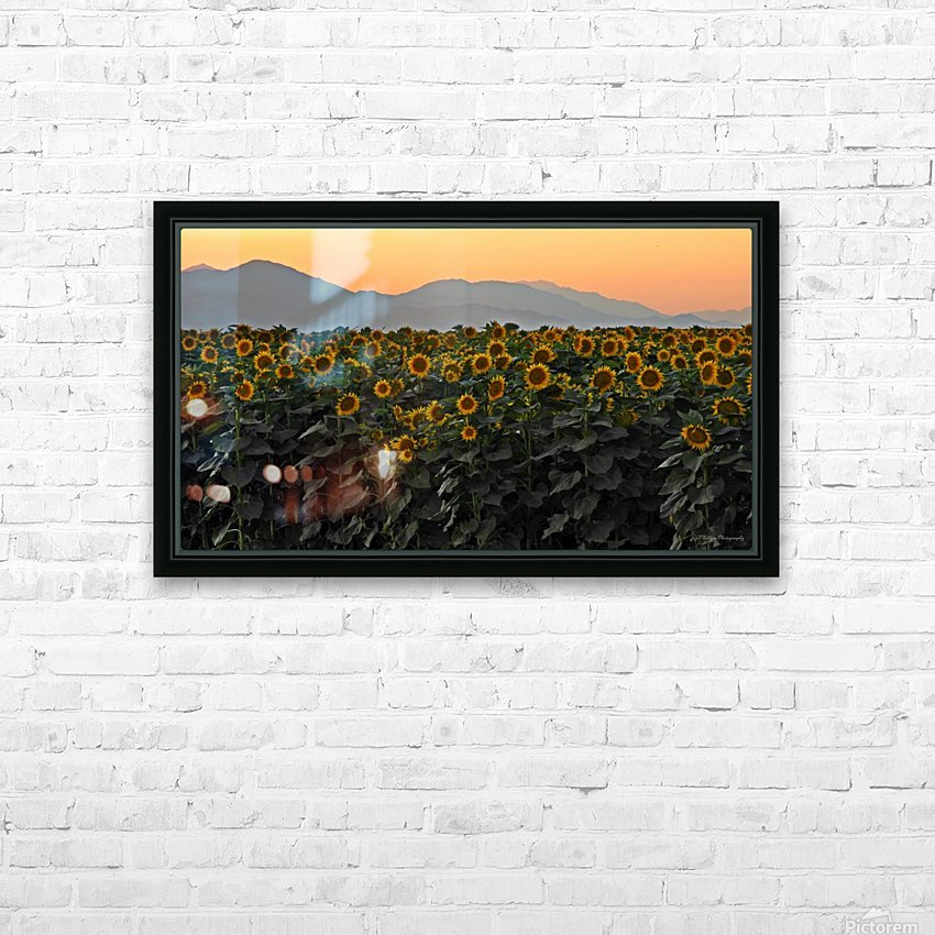 Standing Room Only HD Sublimation Metal print with Decorating Float Frame (BOX)