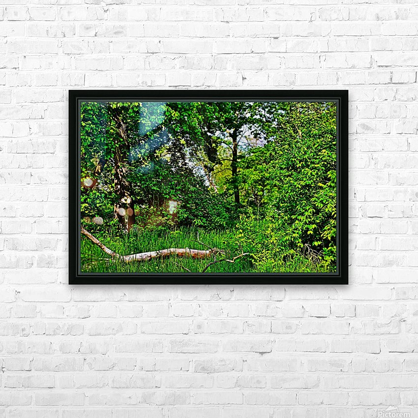 Life in the Shadows of the Trees HD Sublimation Metal print with Decorating Float Frame (BOX)