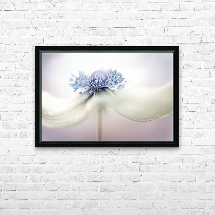 Anemone HD Sublimation Metal print with Decorating Float Frame (BOX)