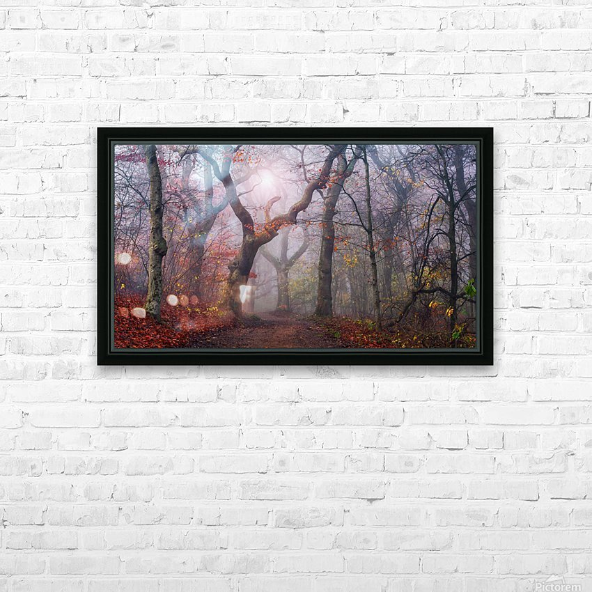 Walking the old path. HD Sublimation Metal print with Decorating Float Frame (BOX)
