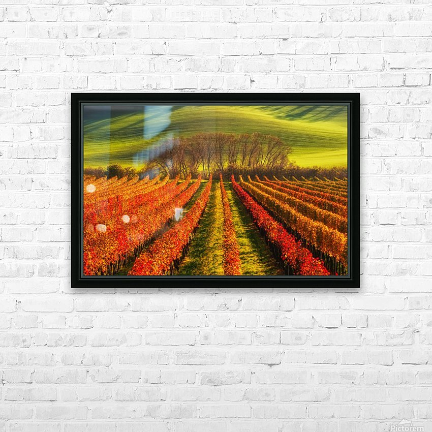 vine-growing HD Sublimation Metal print with Decorating Float Frame (BOX)