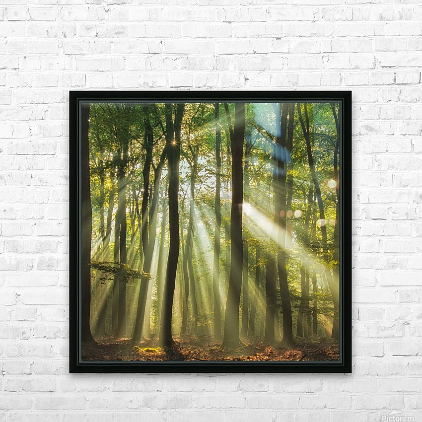 Sunny start to the day ........ HD Sublimation Metal print with Decorating Float Frame (BOX)