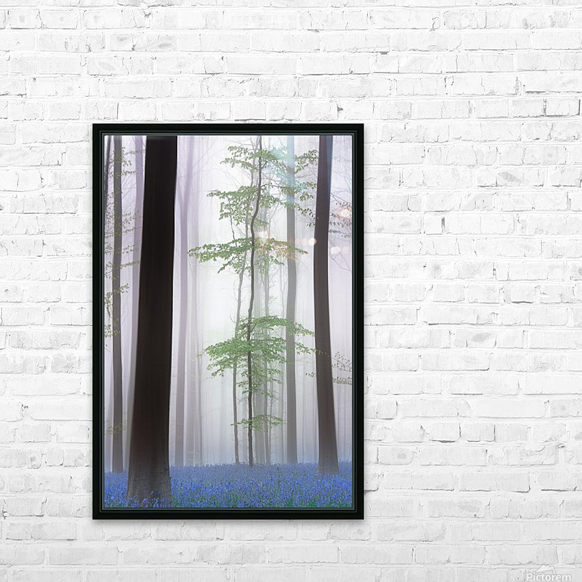 foggy forest .... HD Sublimation Metal print with Decorating Float Frame (BOX)