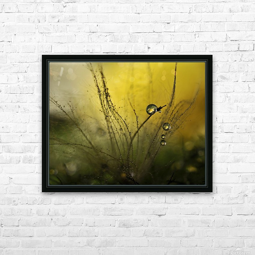A golden morning shower HD Sublimation Metal print with Decorating Float Frame (BOX)