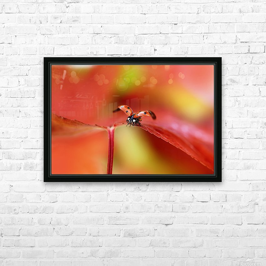 Ladybird in autumn HD Sublimation Metal print with Decorating Float Frame (BOX)