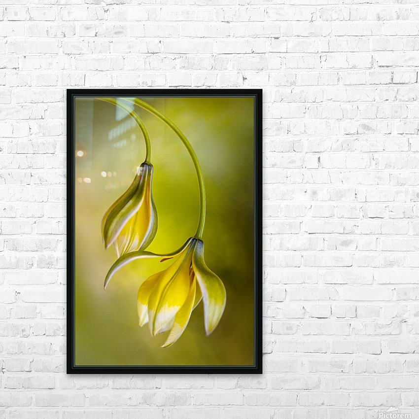 Tulipa HD Sublimation Metal print with Decorating Float Frame (BOX)
