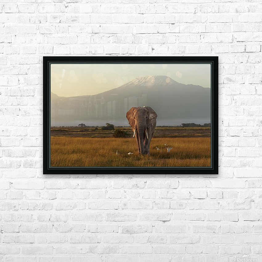 Under the roof of Africa HD Sublimation Metal print with Decorating Float Frame (BOX)
