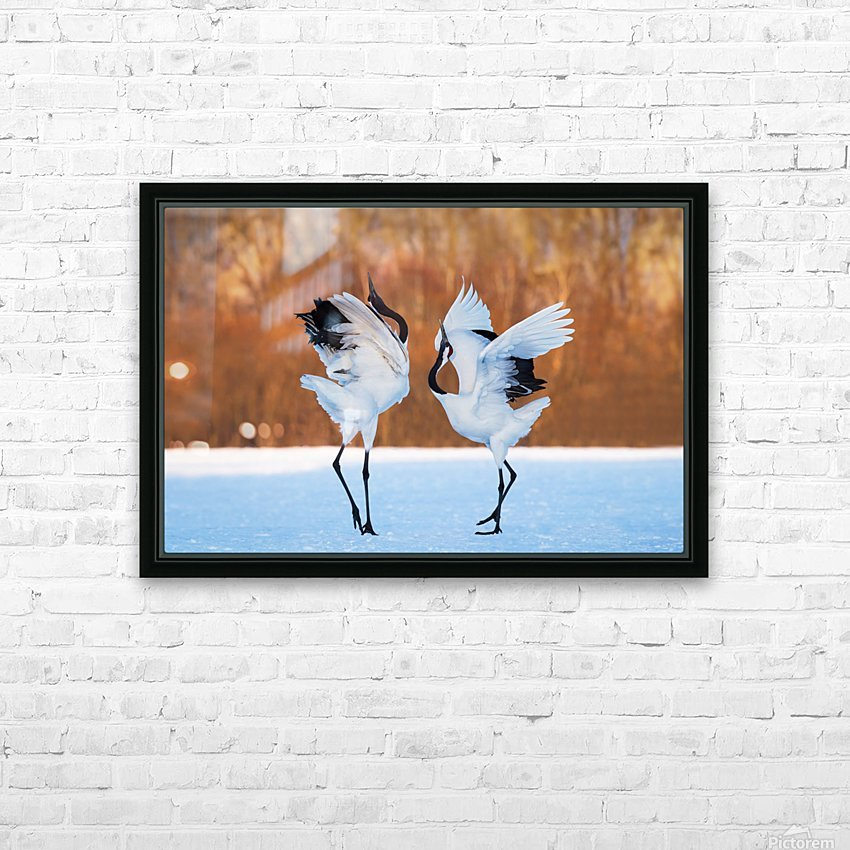 The dance of love HD Sublimation Metal print with Decorating Float Frame (BOX)