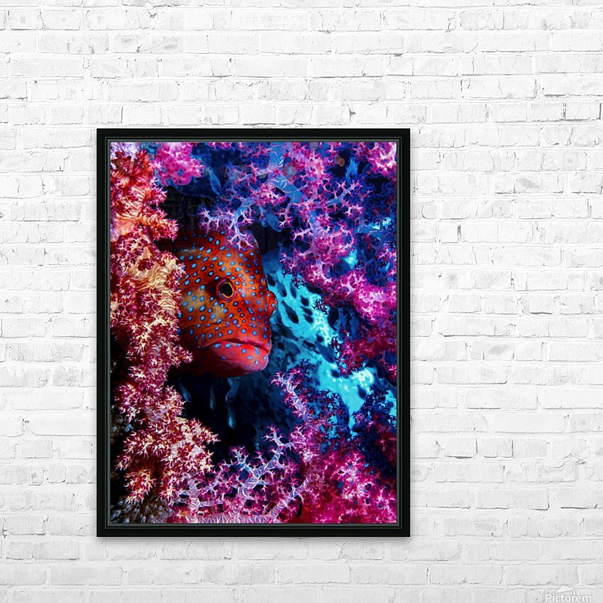 Coral Hind HD Sublimation Metal print with Decorating Float Frame (BOX)
