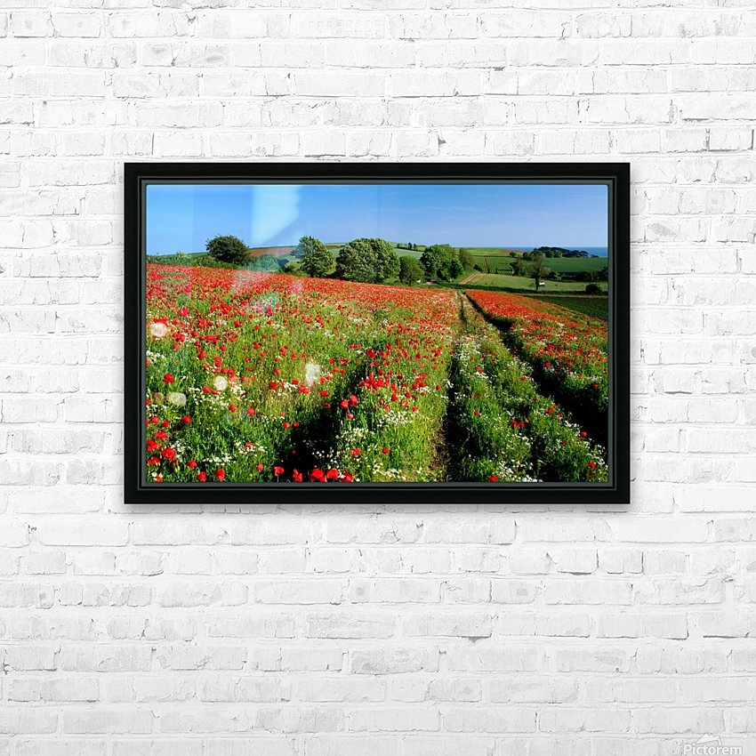 Ablaze of colour HD Sublimation Metal print with Decorating Float Frame (BOX)