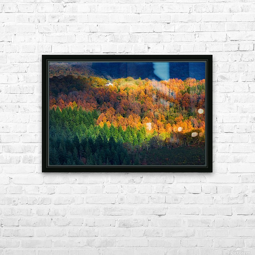 Amongst the trees HD Sublimation Metal print with Decorating Float Frame (BOX)