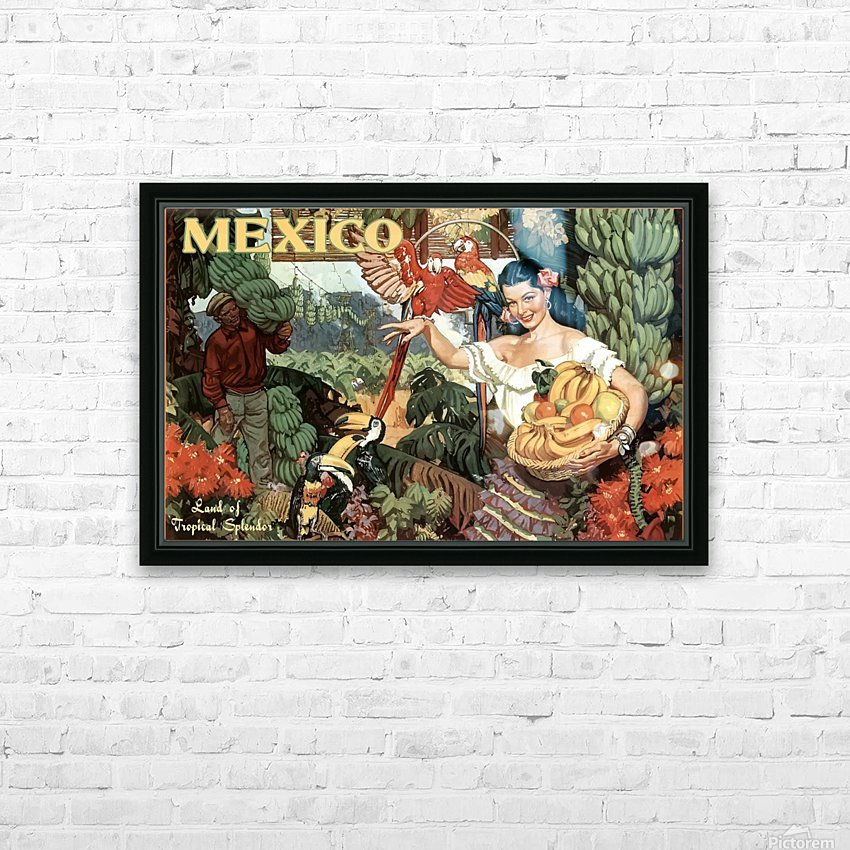 Mexico Land of Tropical Splendor HD Sublimation Metal print with Decorating Float Frame (BOX)