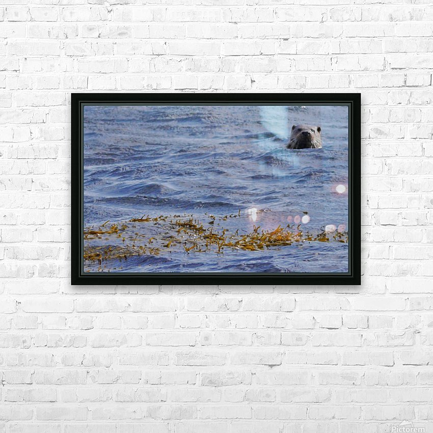 Watching Otter HD Sublimation Metal print with Decorating Float Frame (BOX)