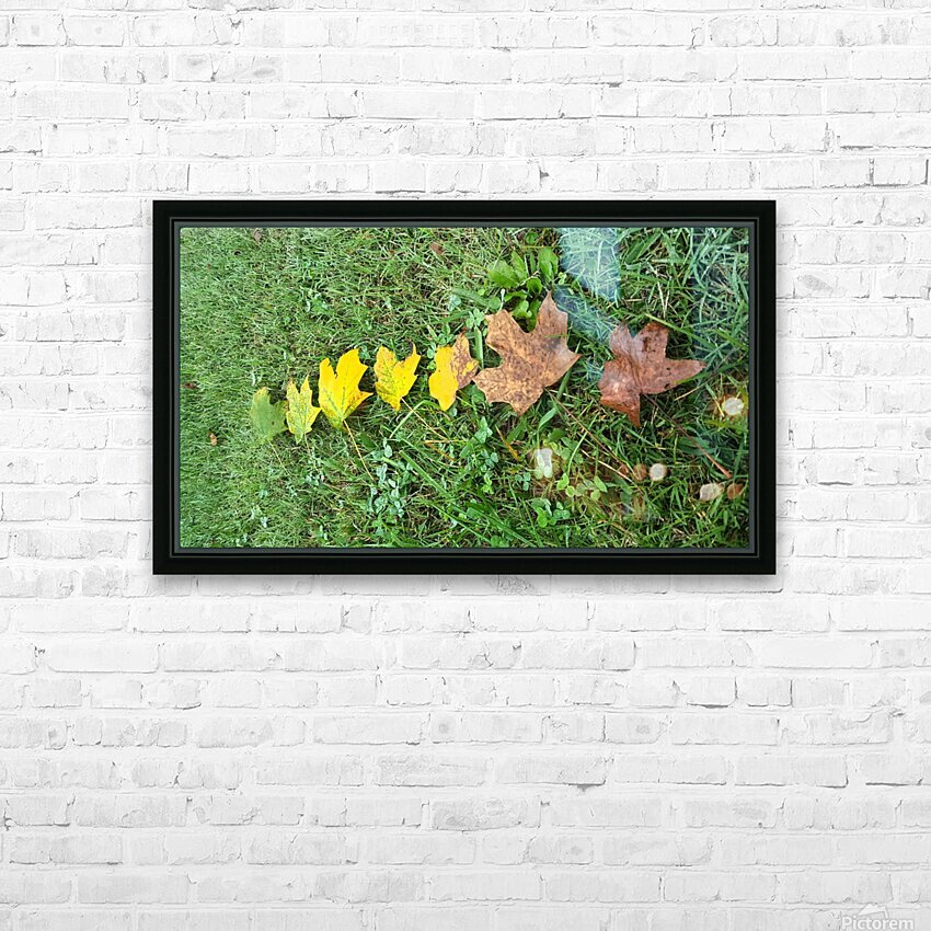 Lifespan HD Sublimation Metal print with Decorating Float Frame (BOX)