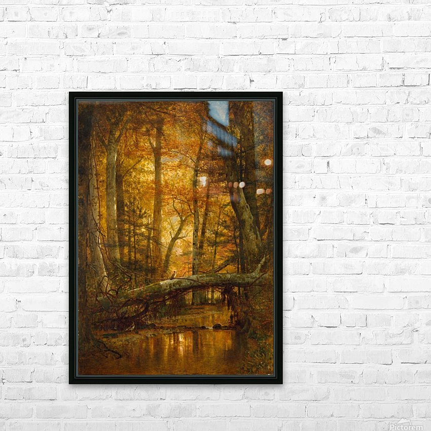 Detail from a forest HD Sublimation Metal print with Decorating Float Frame (BOX)