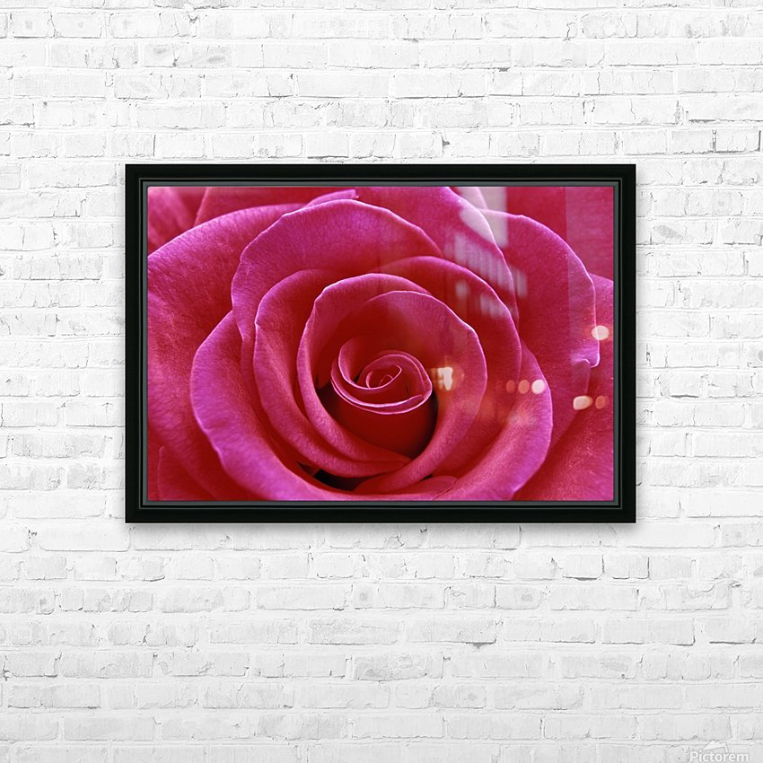 Rose Blossom HD Sublimation Metal print with Decorating Float Frame (BOX)