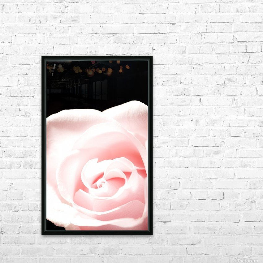 Pink Rose, Close-Up HD Sublimation Metal print with Decorating Float Frame (BOX)