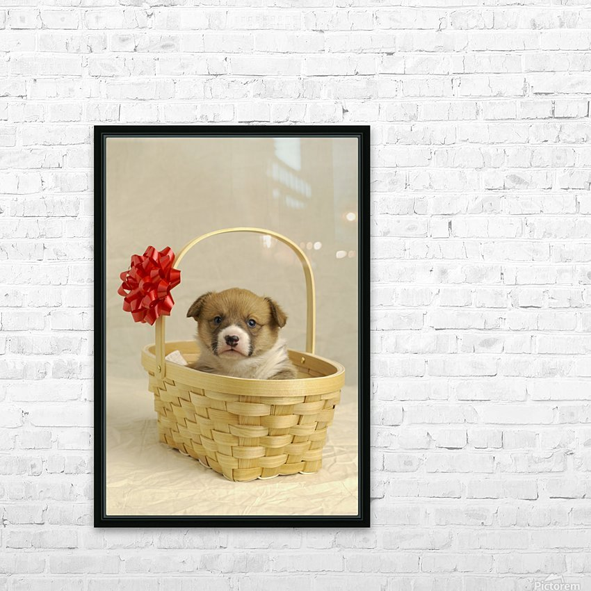 Puppy In A Basket HD Sublimation Metal print with Decorating Float Frame (BOX)