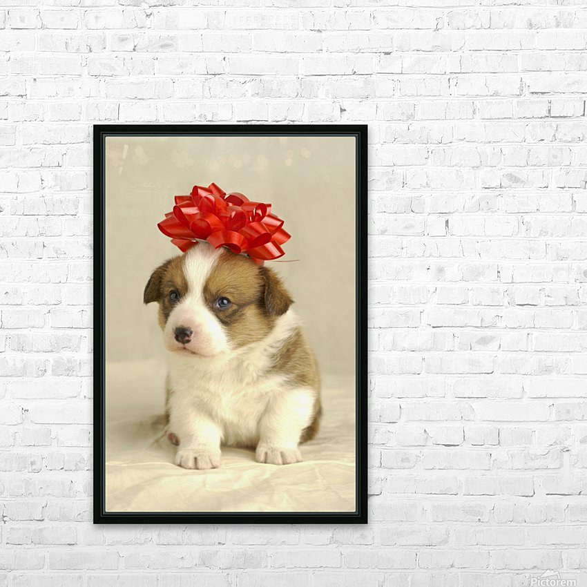 Puppy Wearing A Red Bow HD Sublimation Metal print with Decorating Float Frame (BOX)