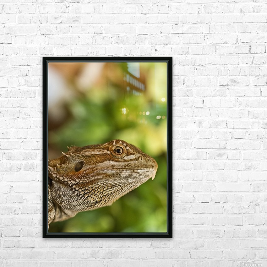 Bearded Dragon Lizard HD Sublimation Metal print with Decorating Float Frame (BOX)