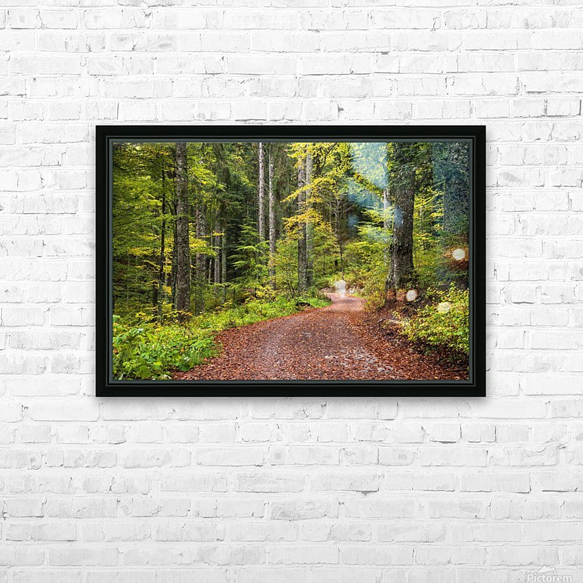 Fall Forest HD Sublimation Metal print with Decorating Float Frame (BOX)