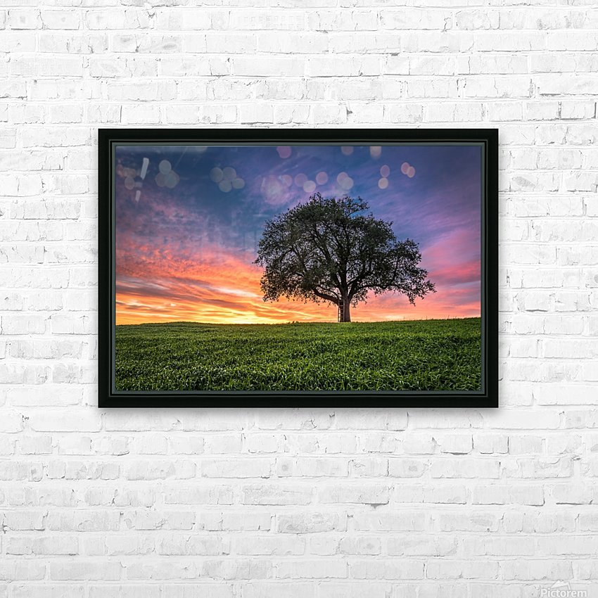 Lonely Tree at Sunset HD Sublimation Metal print with Decorating Float Frame (BOX)