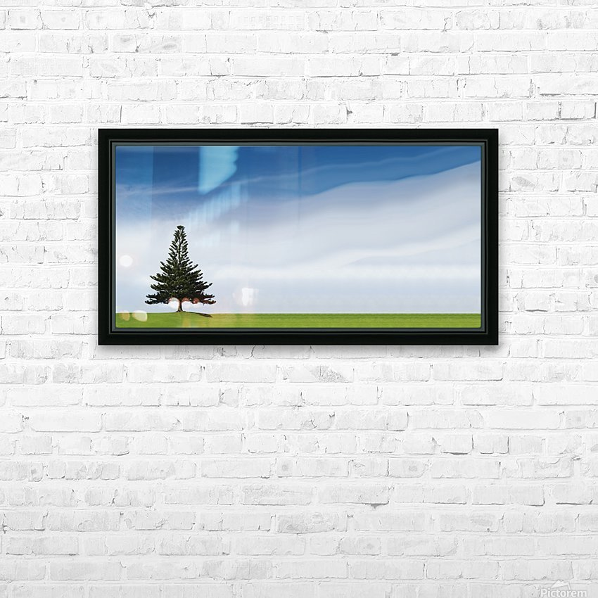 A Coniferous Tree Standing Alone In A Field HD Sublimation Metal print with Decorating Float Frame (BOX)