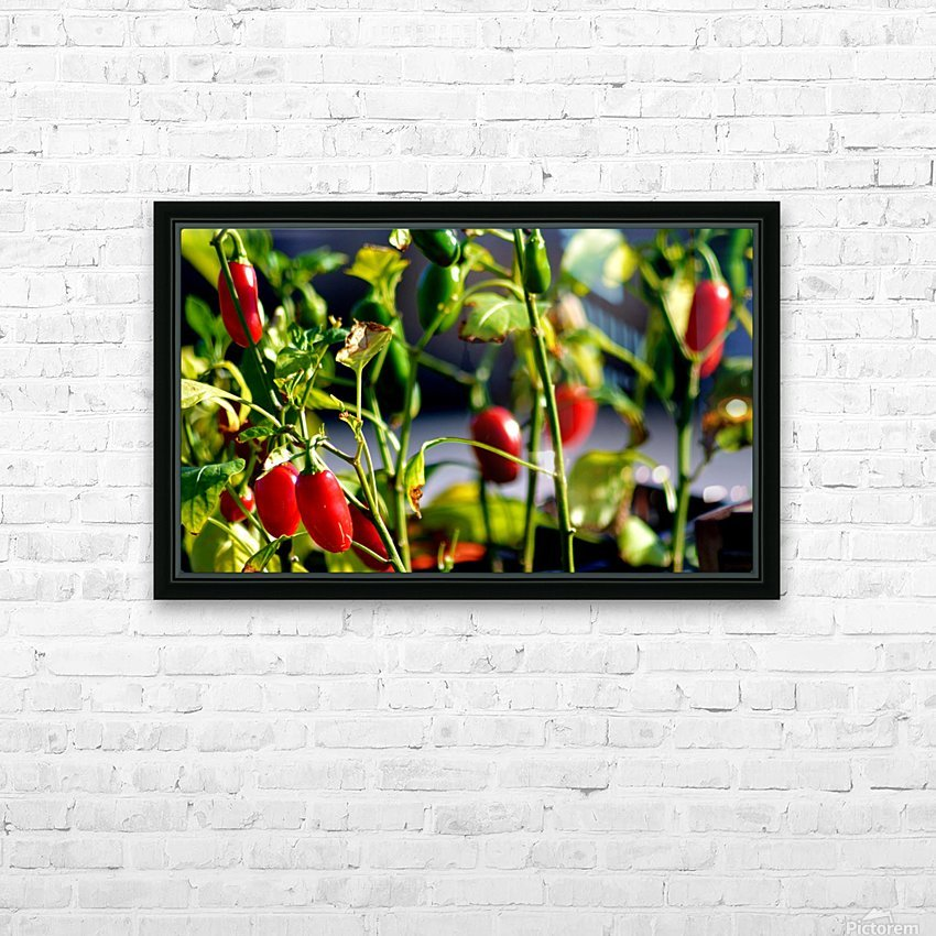 Peppers HD Sublimation Metal print with Decorating Float Frame (BOX)