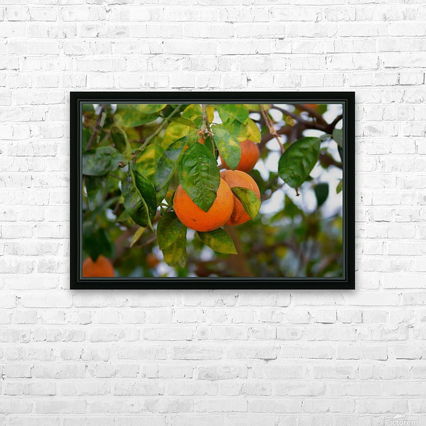 Oranges HD Sublimation Metal print with Decorating Float Frame (BOX)