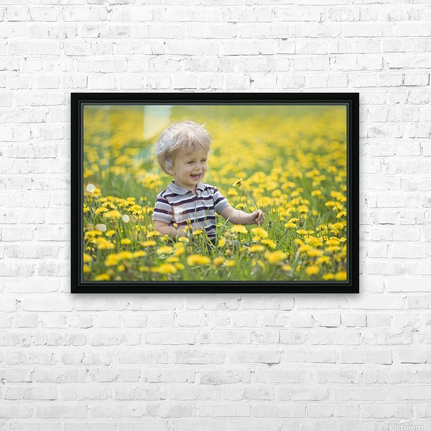 18-Month-Old Boy In Dandelion Field; Thunder Bay, Ontario, Canada HD Sublimation Metal print with Decorating Float Frame (BOX)