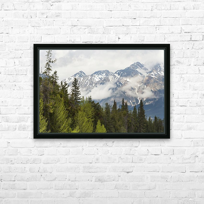 A Forest And The Rocky Mountains; Jasper, Alberta, Canada HD Sublimation Metal print with Decorating Float Frame (BOX)