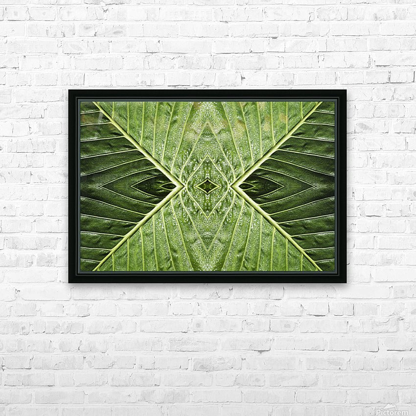 Close up of vein patterns in leaves;Gold coast queensland australia HD Sublimation Metal print with Decorating Float Frame (BOX)