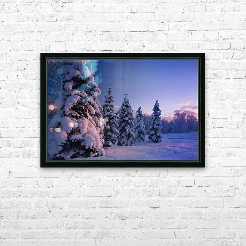 Snow Covered Spruce Trees At Sunset With Pink Alpenglow During Winter, Russian Jack Park, Anchorage, Southcentral Alaska, Usa. HD Sublimation Metal print with Decorating Float Frame (BOX)