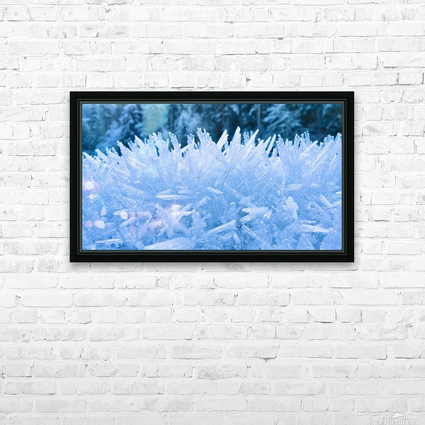 Close Up Of Hoar Frost Along The North Fork Of The Nooksak River During Winter, Mount Baker National Forest, Washington, Usa HD Sublimation Metal print with Decorating Float Frame (BOX)