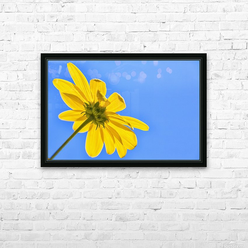 Yellow flower against a blue sky; Bolivia HD Sublimation Metal print with Decorating Float Frame (BOX)