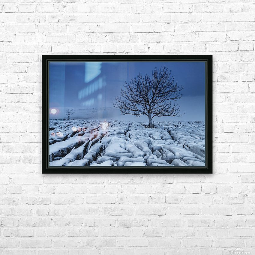 Cold Blue Trees, Yorkshire Dales, UK HD Sublimation Metal print with Decorating Float Frame (BOX)