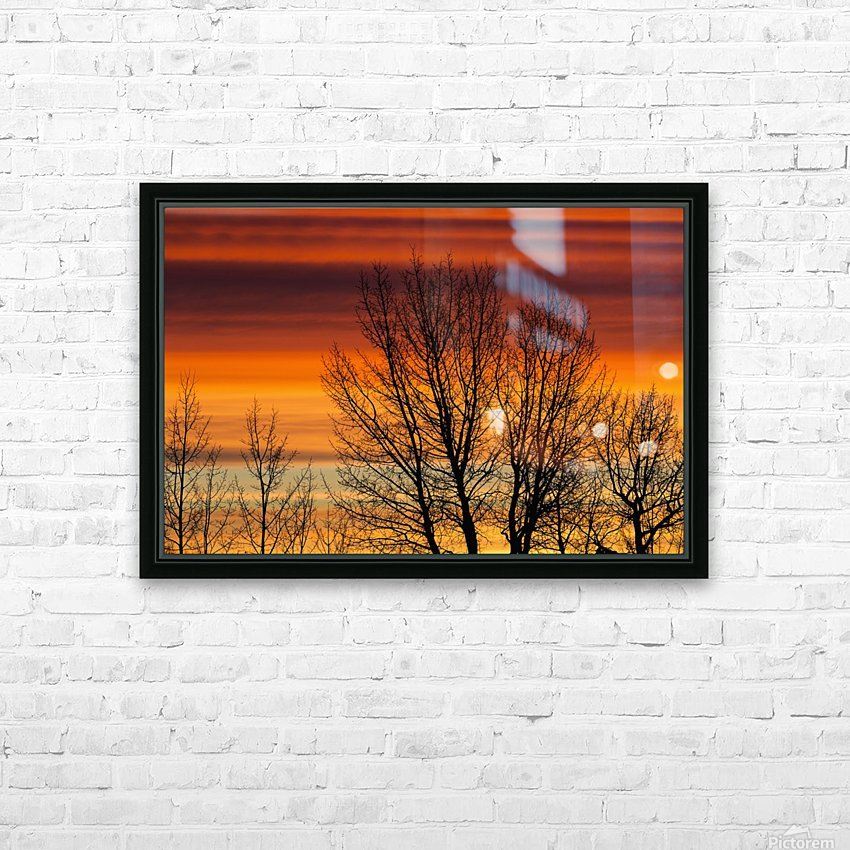 Silhouetted tree branches with dramatically colourful clouds at sunrise; Calgary, Alberta, Canada HD Sublimation Metal print with Decorating Float Frame (BOX)