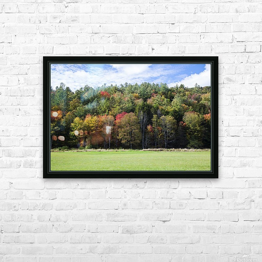 Colourful trees in autumn; Woodstock, Vermont, United States of America HD Sublimation Metal print with Decorating Float Frame (BOX)